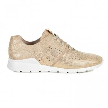 Tye Stardust Sneakers in Gold